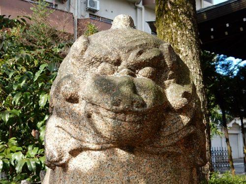 京都熊野神社の狛犬の吽